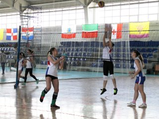 volleyball2015_18